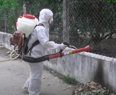 Tây Ninh giảm gần 70% số ca mắc sốt xuất huyết