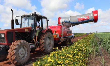 Triển khai máy phun tầm xa Ecowide trong chăm sóc cây mía