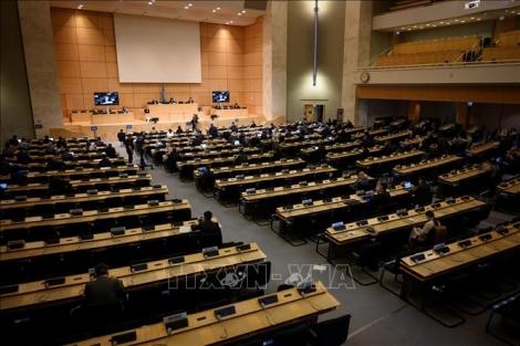 Khoá họp thứ 43 Hội đồng nhân quyền LHQ thông qua nhiều văn kiện quan trọng