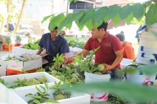 Tây Ninh: Sơ kết hoạt động mô hình Quỹ tín dụng nhân dân 6 tháng đầu năm 2020