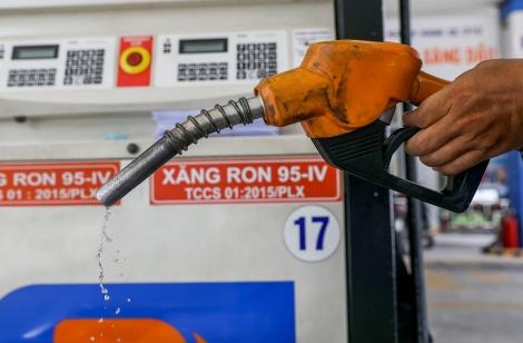 Giá xăng ngày mai có thể giữ nguyên