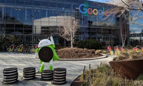 Nhân viên Google làm việc ở nhà tới hè 2021