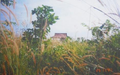 Đôn Thuận - địa linh nhân kiệt