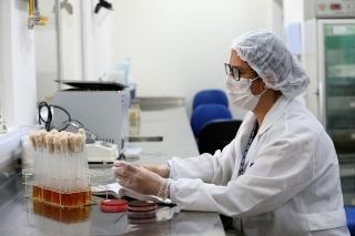 Vaccine Oxford ngừng thử nghiệm là 'dấu hiệu tốt'