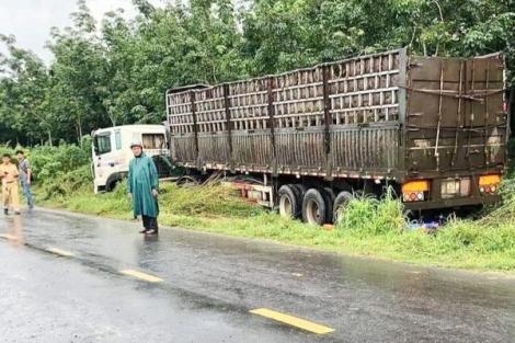 Tài xế container ngủ gật gây tai nạn chết người