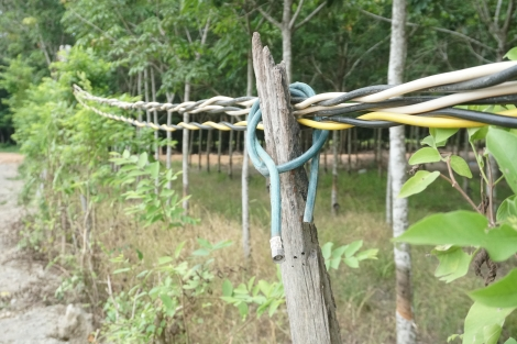Kiến nghị khắc phục hệ thống dây cáp viễn thông rối rắm