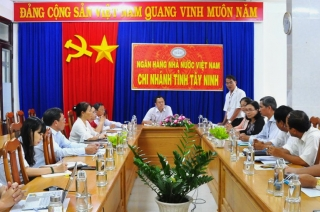 Tây Ninh: Tỷ lệ nợ xấu thấp hơn trung bình chung cả nước