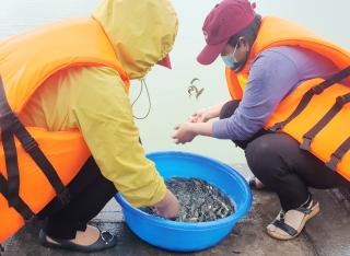 Tây Ninh: Thả hơn nửa triệu con cá giống vào hồ Dầu Tiếng