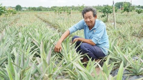 Phát huy vai trò của Hội Nông dân trong phát triển nông nghiệp, nông thôn