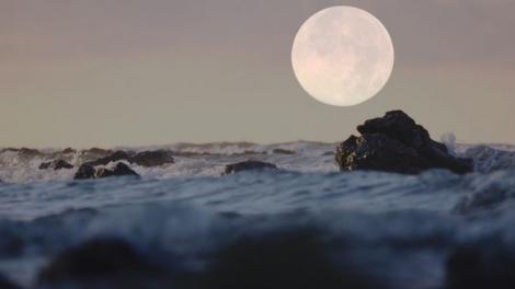 NASA công bố phát hiện chưa từng có về Mặt Trăng