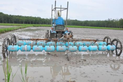 Bài 2: Xây dựng thương hiệu gạo Tây Ninh