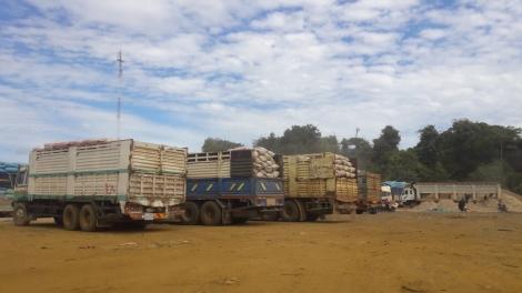 Nhiều nhà máy mì thiếu nguyên liệu sản xuất, hoạt động cầm chừng