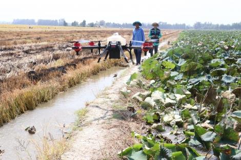 Chuyển đổi số trong nông nghiệp