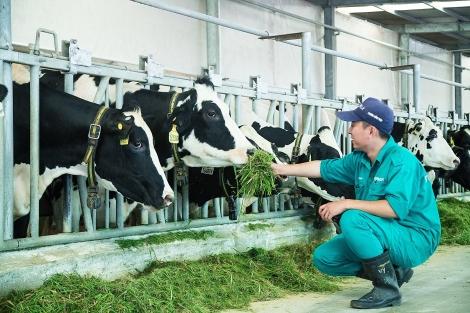 Tây Ninh: Ứng dụng công nghệ cao vào sản xuất đạt nhiều kết quả tích cực