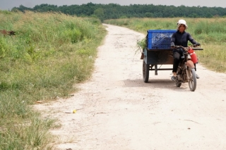 Lãng phí đất nông trường ở huyện Tân Châu