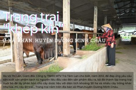 """Trang trại """"khép kín"""" ở xã Phan, huyện Dương Minh Châu"""