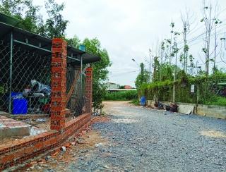 Người dân kiến nghị chừa đường giao thông nông thôn rộng 8m