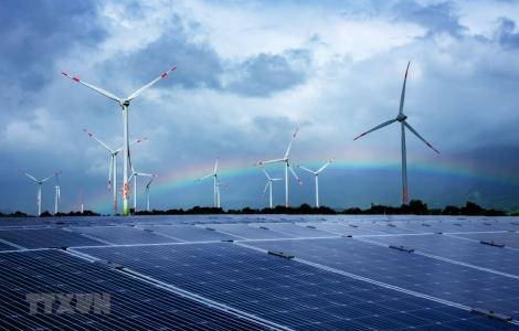 Tăng trưởng kinh tế nhanh thúc đẩy tiêu thụ năng lượng xanh ở Việt Nam