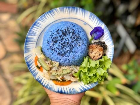 Về Tây Ninh ăn chay