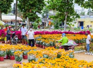 Tân Châu: Chi trên 7,7 tỷ đồng tổ chức Tết Nguyên đán Tân Sửu 2021