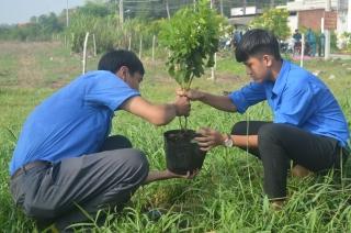 Thị đoàn Hòa Thành: Nhiều công trình, phần việc thanh niên hiệu quả thiết thực