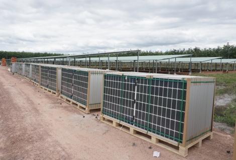 Cần triển khai đúng quy định các Dự án nông nghiệp tận dụng mái nhà làm điện năng lượng mặt trời