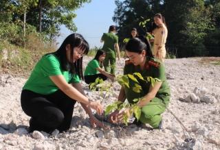 """Hoà Thành: Ra quân hưởng ứng phong trào """"Tết trồng cây"""""""