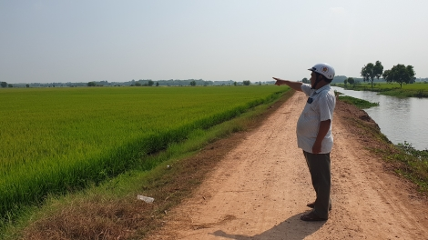 Xã Cẩm Giang: Hệ thống đê bao giúp người dân an tâm sản xuất