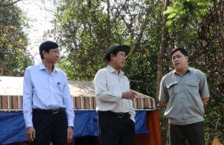 Phó Chủ tịch UBND tỉnh kiểm tra công tác phòng cháy, chữa cháy rừng