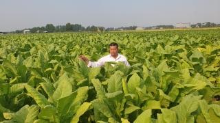 Xã Phước Bình, thị xã Trảng Bàng: Phấn đấu đạt chuẩn nông thôn mới