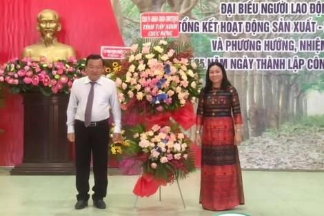 Công ty CP cao su Tân Biên: Vượt qua khó khăn, hoàn thành kế hoạch sản xuất - kinh doanh