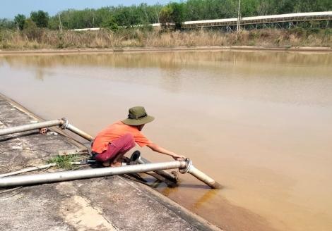 Nguồn nước thượng nguồn sông Sài Gòn chuyển màu bất thường