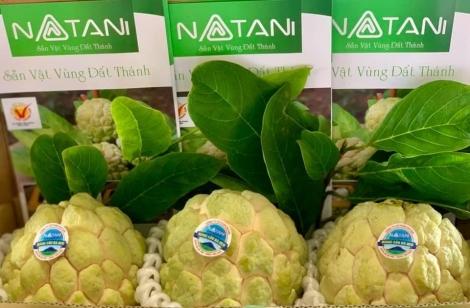 Công ty CP Natani xuất 1 tấn mãng cầu Bà Đen sang Trung Đông