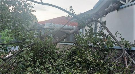 Lốc xoáy gây thiệt hại khá nặng