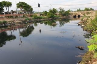 Có đến 11 nguyên nhân gây ô nhiễm nước sông Vàm Cỏ Đông