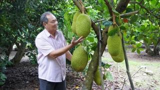 Xứng danh hội viên Hội Nông dân Việt Nam tiến bộ và hiện đại