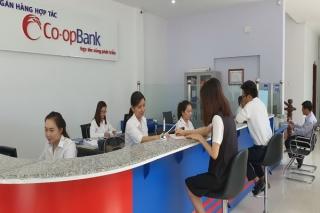 Ngân hàng Hợp tác xã Việt Nam: Vì sự phát triển bền vững hệ thống Quỹ Tín dụng Nhân dân