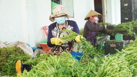 Bảo đảm số lượng và chất lượng nguồn nhân lực trong sản xuất nông nghiệp