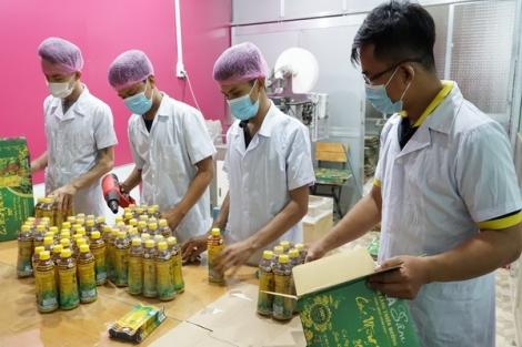 Tìm giải pháp nâng cao chất lượng nguồn nhân lực trong sản xuất nông nghiệp