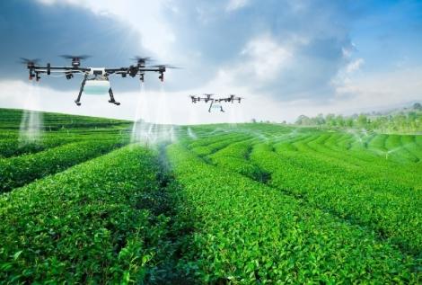 Chuyển đổi số trong nông nghiệp - câu chuyện của sự phát triển