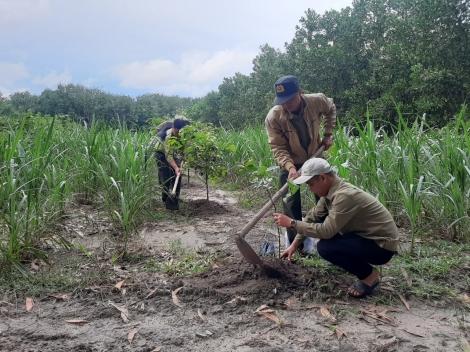 Người nhận khoán trồng rừng chờ chính sách hỗ trợ mới