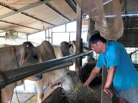 Hội Nông dân Thành phố vận động quỹ hỗ trợ nông dân hơn 5,7 tỷ đồng