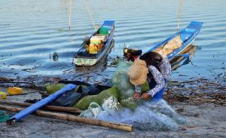 Tăng cường bảo vệ và phát triển nguồn lợi thuỷ sản trong lòng hồ Dầu Tiếng