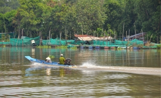 Cử tri đề nghị đầu tư phát triển du lịch dọc sông Vàm Cỏ Đông và đảo Nhím