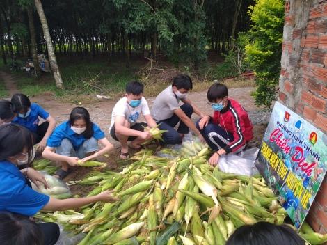 Phường Ninh Thạnh: Tích cực giải cứu nông sản trong mùa dịch