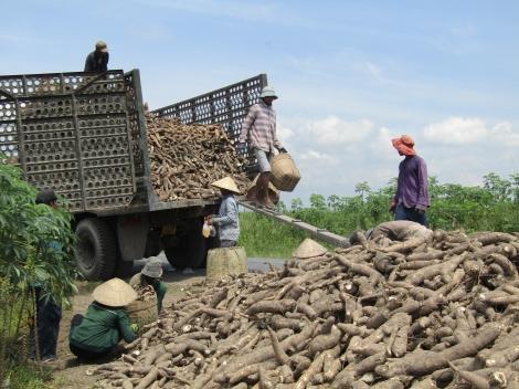 Tây Ninh: Nhiều ngân hàng đồng loạt giảm lãi suất cho vay từ tháng 7.2021