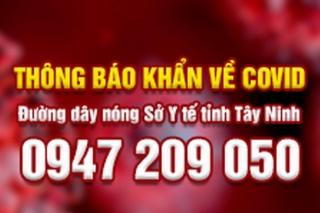 UBND tỉnh phối hợp với Hội đồng hương Tây Ninh tại TP. Hồ Chí Minh đón công dân từ TP.Hồ Chí Minh về quê