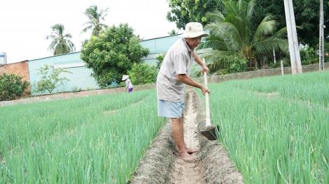 Bảo đảm sản xuất nông nghiệp trong tình hình dịch bệnh