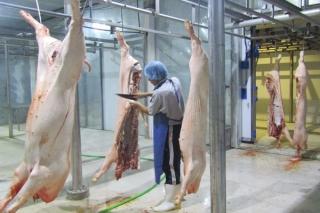 Bảo đảm an toàn phòng, chống dịch Covid-19 tại các cơ sở giết mổ gia súc, gia cầm
