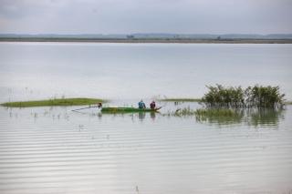 Nước hồ Dầu Tiếng bị đục do mưa lũ